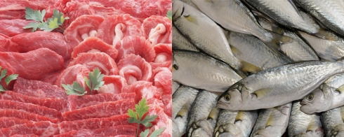 carn+peix