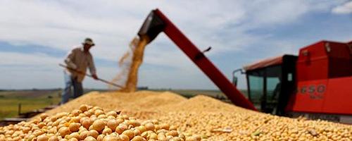 dieta globalitzada